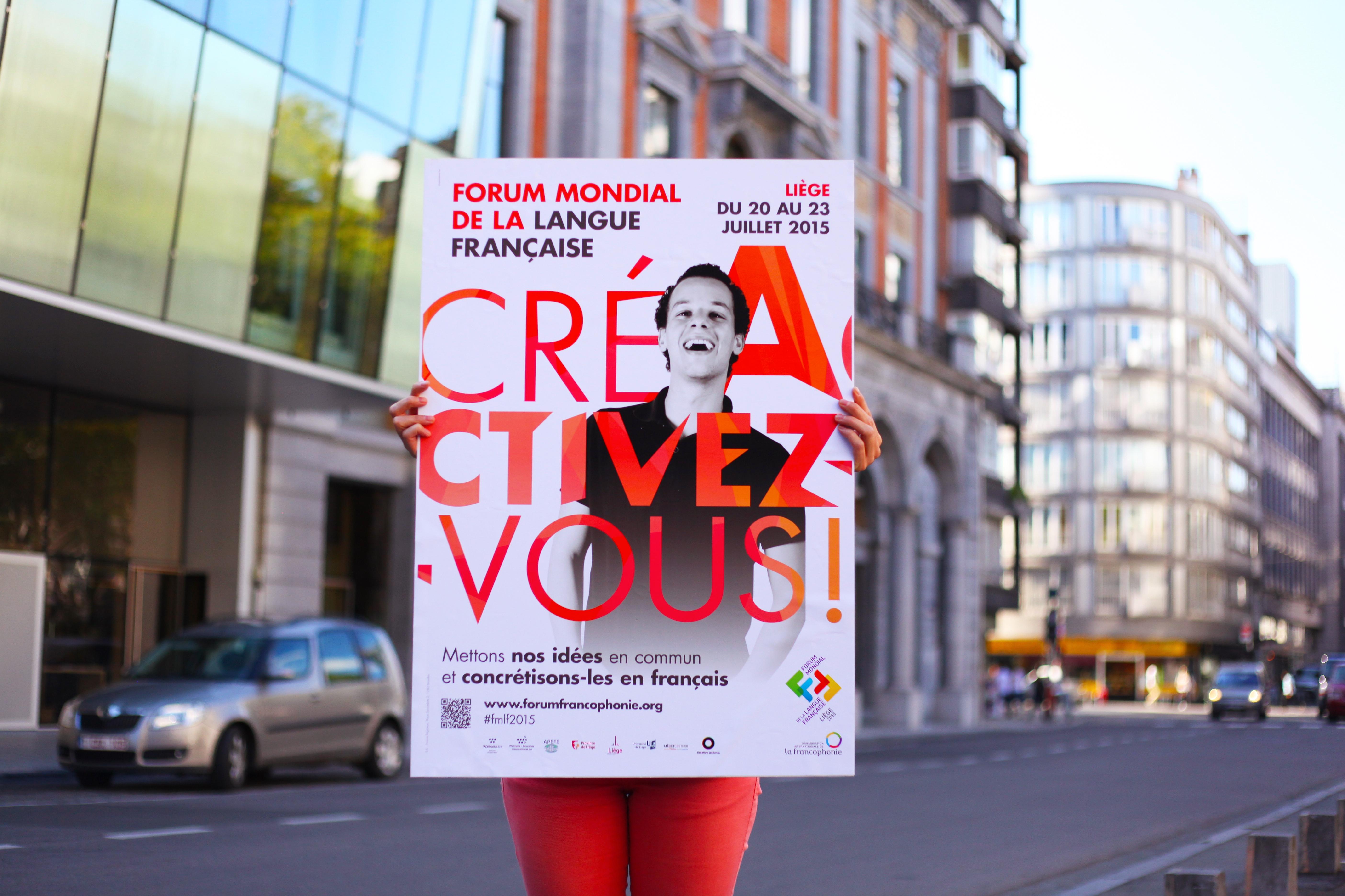 Rencontres en cyber-francophonie #FMLF2015
