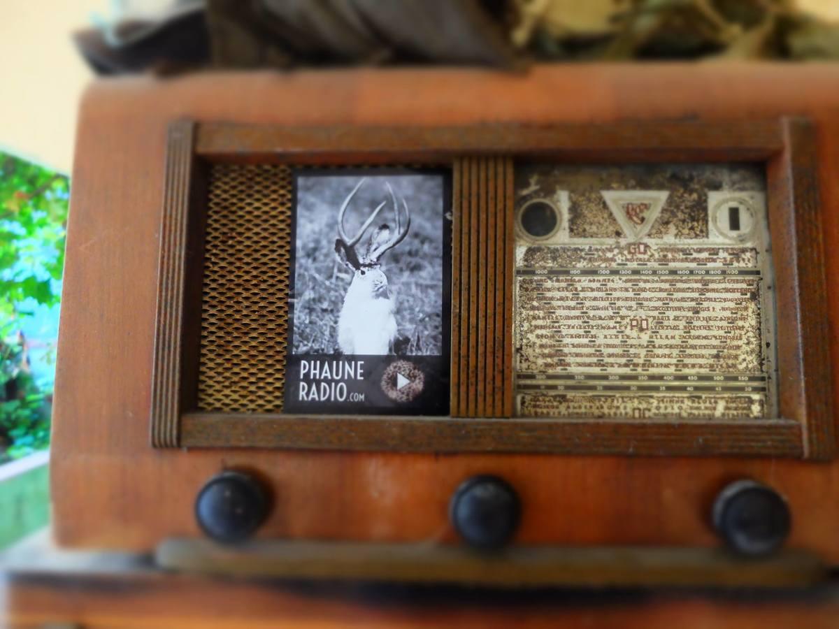 Phaune Radio : la nature sur écoute