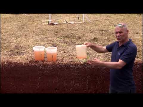 Manejo Adequado Impacta na Infiltração de Água no Solo