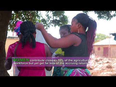 Women's livelihoods and land rights in Nigeria