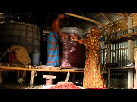 The Chilli Value Chain in Bangladesh
