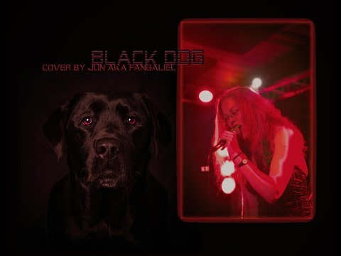 Black Dog  cover Jun aka Fangaliel