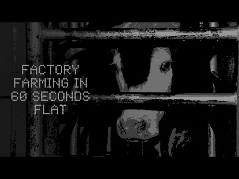 Factory Farming in 60 Seconds Flat