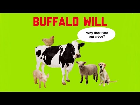 Buffalo Will • Why don´t you eat a dog?