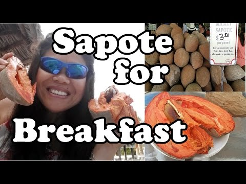 Eating Sapote a.k.a Mamey for Breakfast in Miami