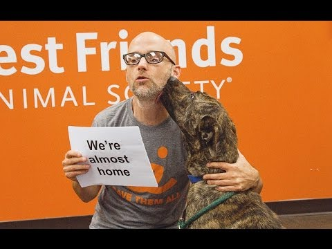 Moby - Almost Home (Best Friends Animal Society Lyric Video) (with Damien Jurado)