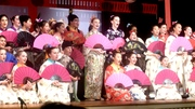 Mikado2_2013 133_Good