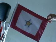 GSSF Car Flag and Flag Pole 120