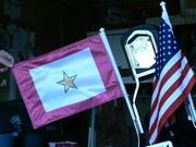 GSSF Car Flag and Flag Pole 119