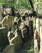 04 Zidovsky hrbitov Cz SDC