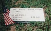 143rd NY Whipple, Chas C. 1843-1918