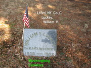143rd NY  Luckey, William Co G.