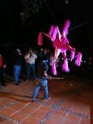 Photo uploaded on January 18, 2010
