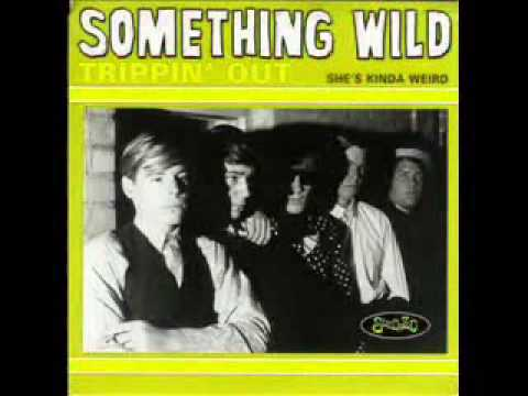 SOMETHING WILD  - Trippin' Out