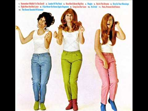Shangri-las - Remember walking in the sand