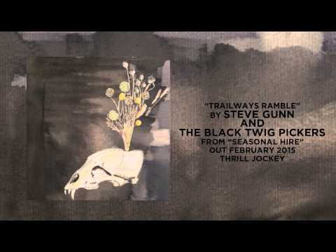 Steve Gunn And The Black Twig Pickers - Trailways Ramble