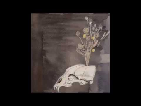 Steve Gunn & The Black Twig Pickers - Dive For The Pearl