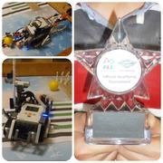 FIRST LEGO LEAGUE (FLL) Strategy and Innovation Award