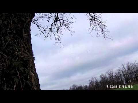 Irlande 2014 chasse au piegon shooting ireland