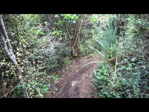 Dog leg track clearing