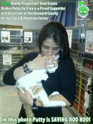 Green Realty Properties   Broward County Animal Care Adoption Center