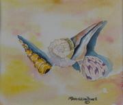 Shells On The Beach I