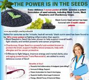 The Power Of Seeds