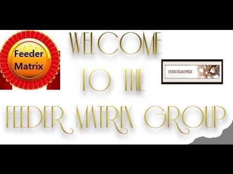Feeder Matrix: Expand Your Success Path!