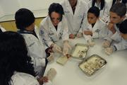 2010-2011 PHCL Saturday Academies
