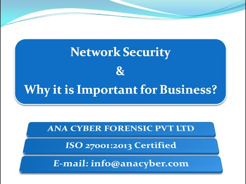 Network Security and Why It Is Important For Business?