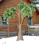 Living Tree Art - Referance Tree 36