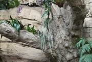 Ken's carved concrete tree planters detail3
