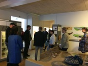 Network meeting and conference 2015 at Bornholm