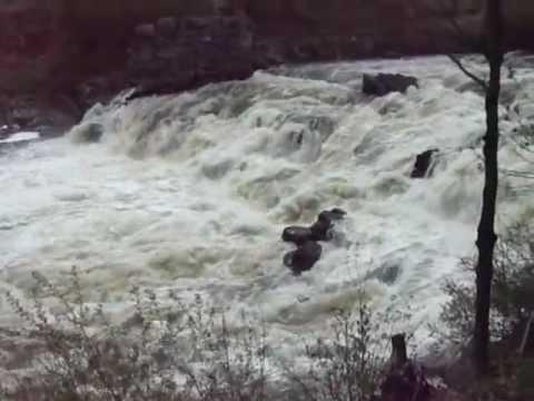 Guy Almost Dies Kayaking