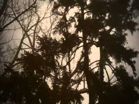 "Roman Turovsky - ""Cantio Sarmatoruthenica CXLVII"" - Stuart Walsh (renaissance lute)"