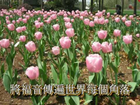 宣教的中國  Mission of China
