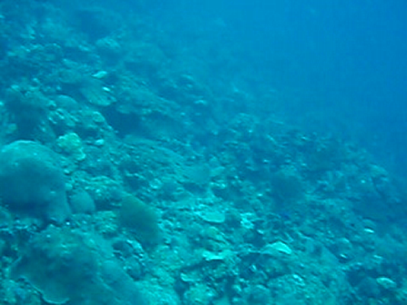 Sight seeing Blauw baai