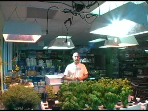 Plant grow light selection for indoor hydroponic gardening - Horizen Hydroponics