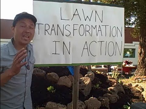 Doctors Transform Lawn into Edible Garden to Reverse the Diabetes Epidemic