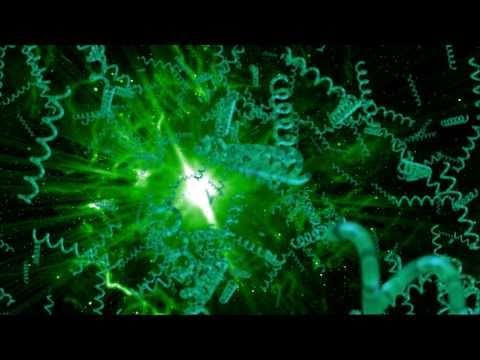 Spirulina-The Amazing Algae (screener)