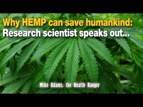 Why HEMP can save humankind: Research scientist speaks out...
