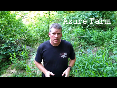 Azure Organic Farm needs our HELP!