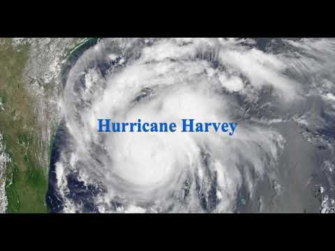 Ron Paul Discusses Hurricane Harvey