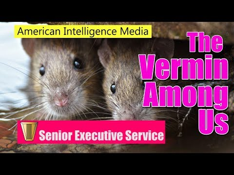 SES: The Vermin Among Us
