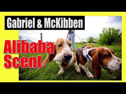 Gabriel and McKibben Deep in Conclave Research