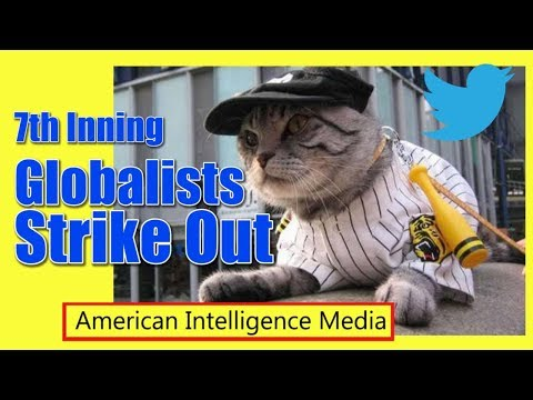 GLOBALISTS are losing - AIM cats winning big
