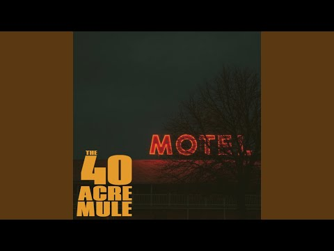 The 40 Acre Mule - You Better Run