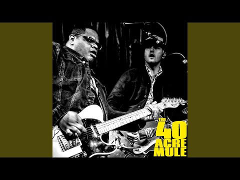 The 40 Acre Mule - I'll Be Around