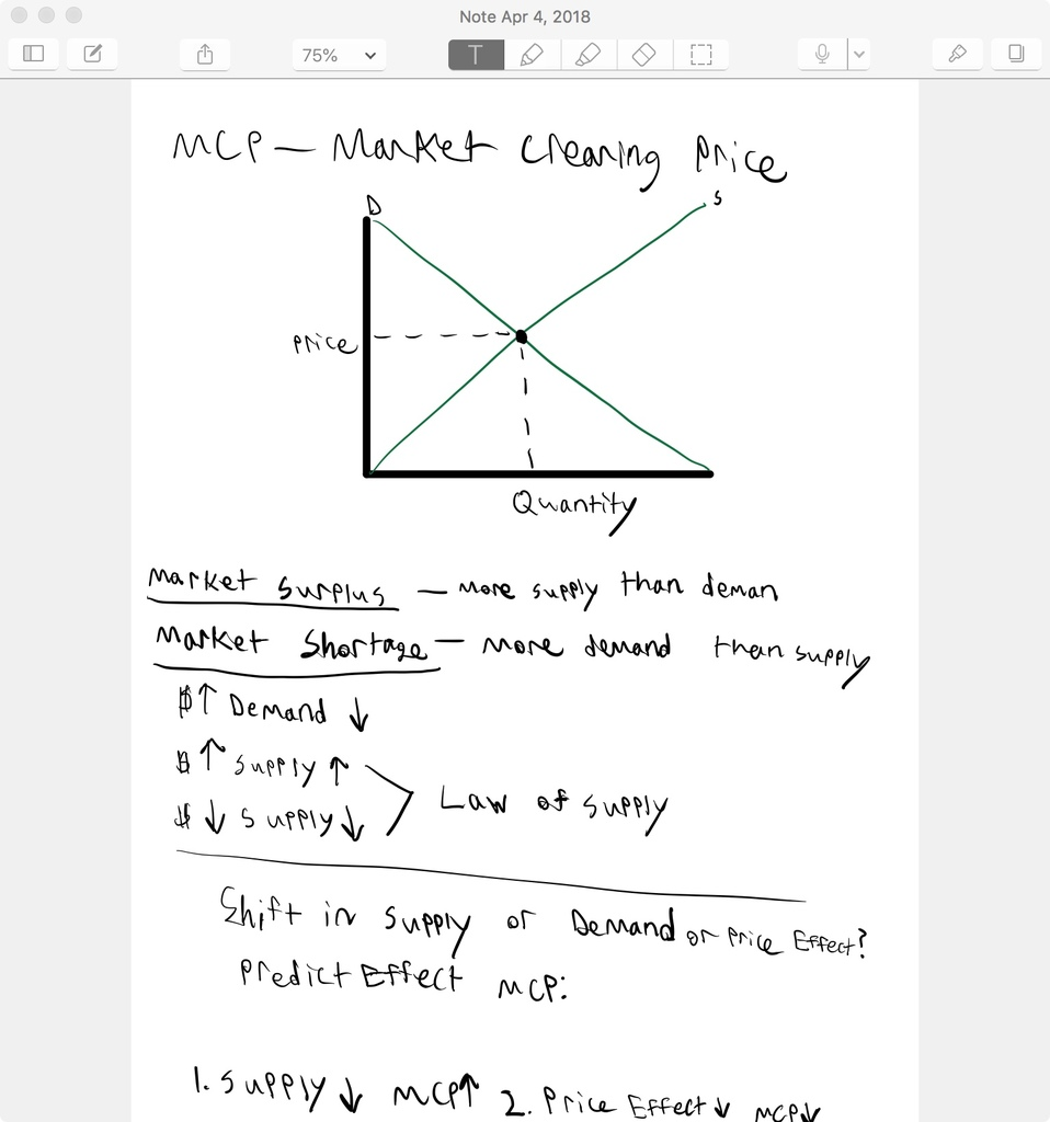 image of notes using Notability