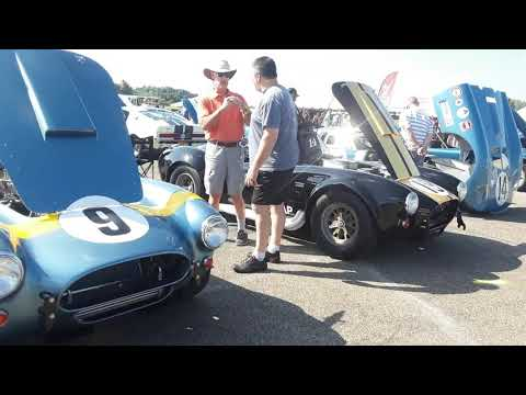 Shelby Cobra,GT350,GT500,Ford GT40 A Walk Amongst the Wild 1 Team Shelby East Coast Grand Nationals